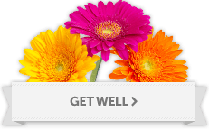 Get Well Soon Flowers Yonkers, White Plains, New York