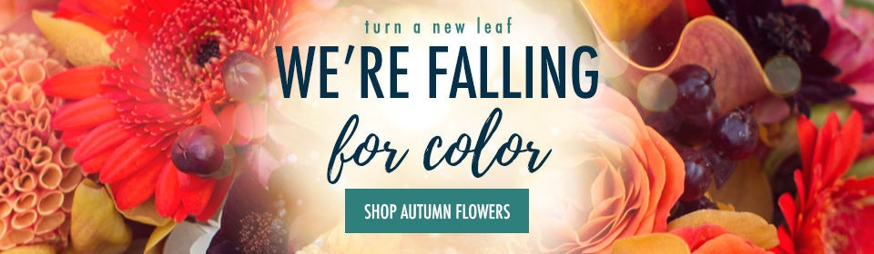 Fall Flowers & Gift Delivery Yonkers, New York