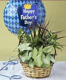 Planter with Mylar Balloon