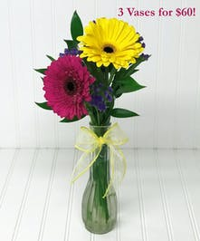 Send Flowers for Secretary's Day Yonkers & White Plains (New York)