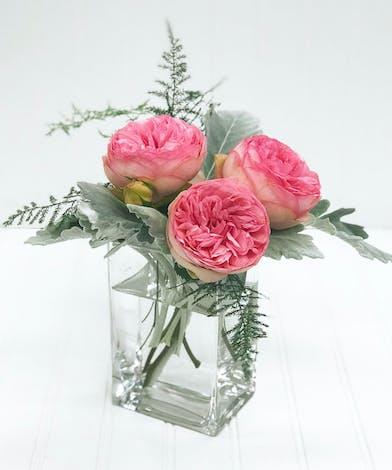 3 Pink Garden Roses in a Square Vase