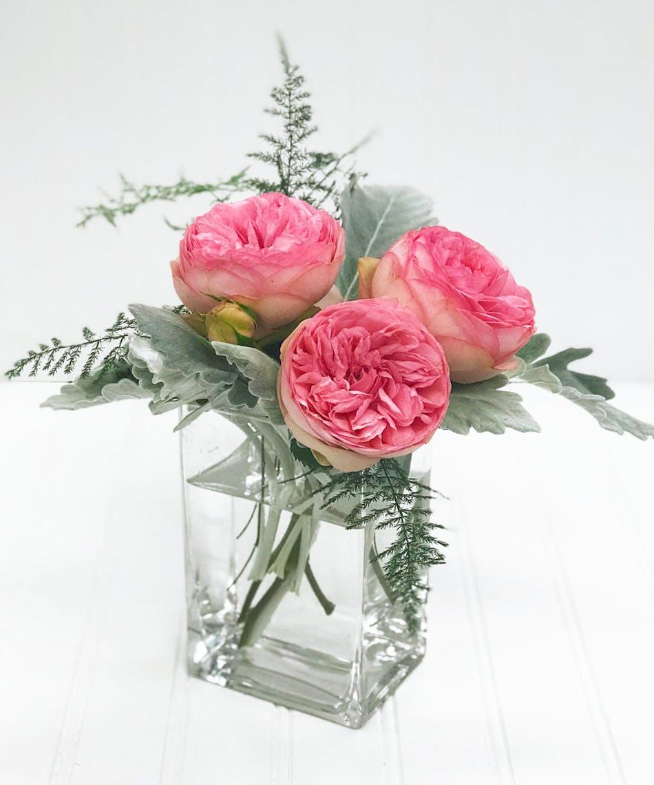 Garden Roses White Plains Ny Yonkers Ny Westchester Florist