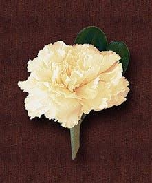 Boutonniere Carnation